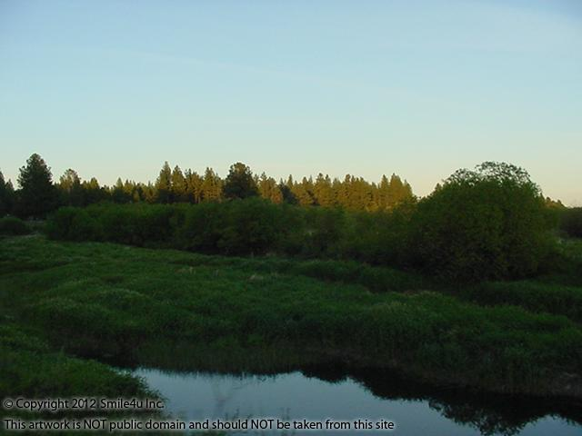589962_watermarked_pic 655.jpg